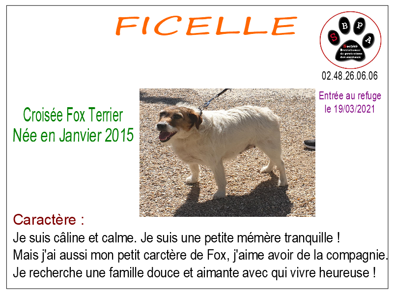 ficelle-2